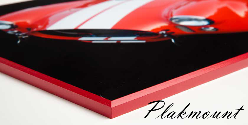 Plak-It® - Plakmount
