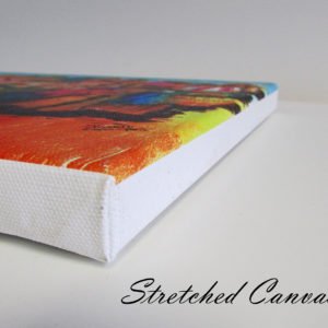 stretched canvas cover